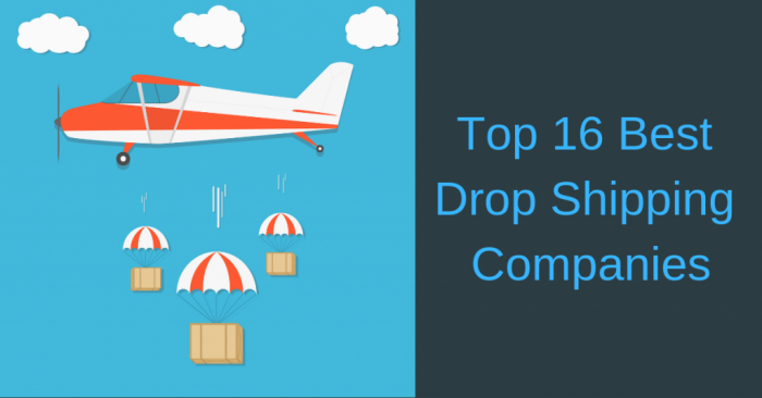 Best Wholesale Dropshipping Companies For Your Ecommerce Business