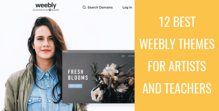 Best Weebly Themes For Artists And Teachers