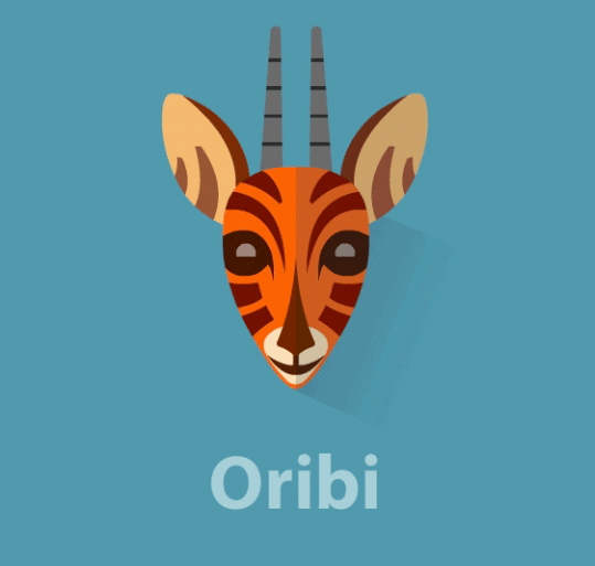 Oribi - Business Analytics With A Difference
